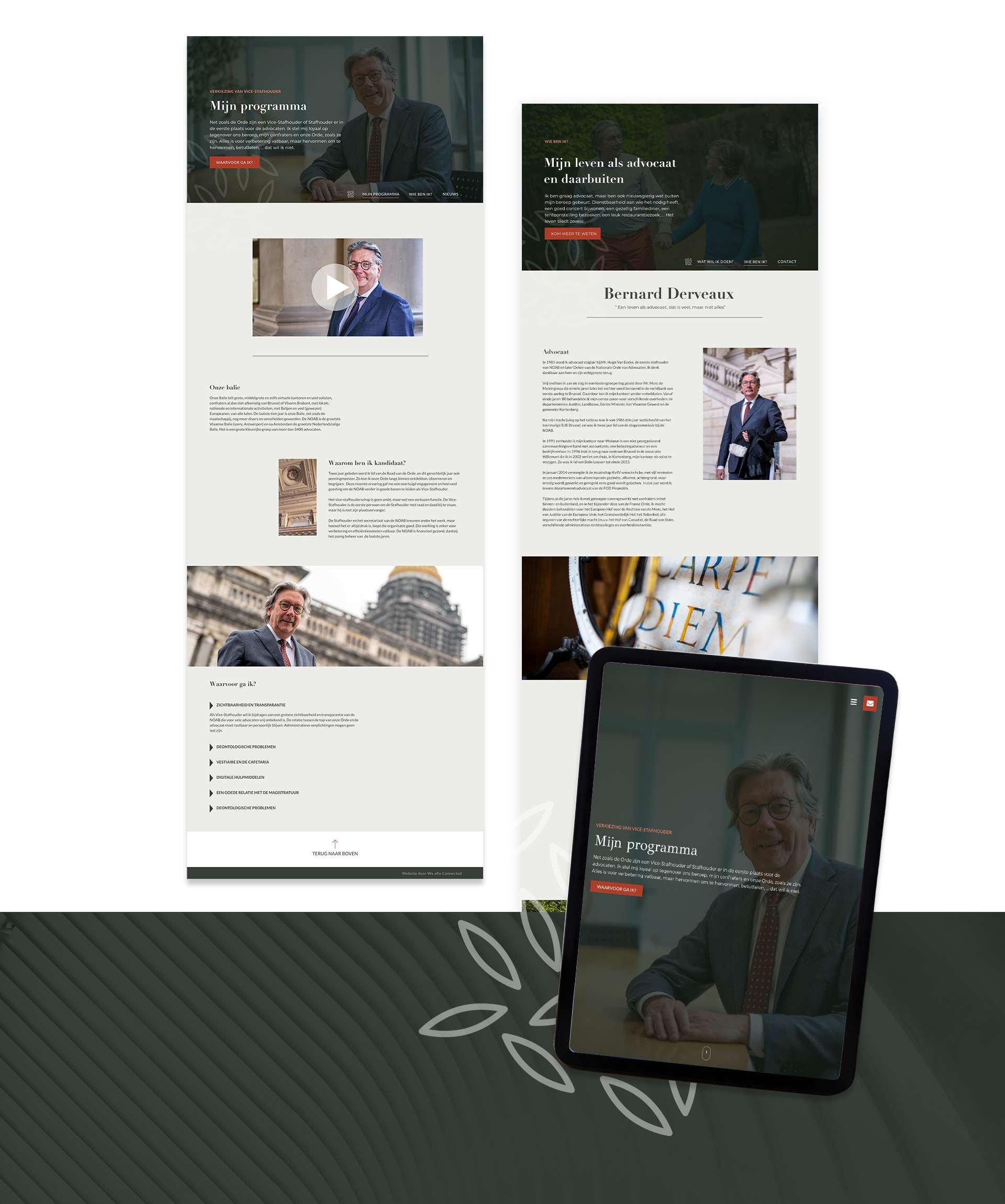 Website Bernard Derveaux
